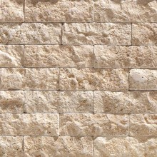 Light Travertine Antique Tumbled 5